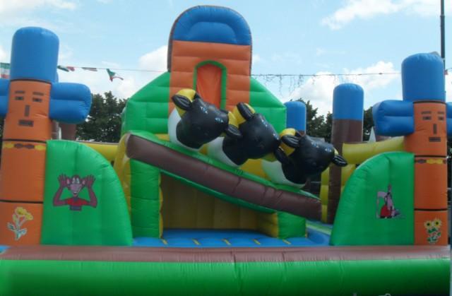 Noleggio giochi e gonfiabili per bambini for Noleggio di grandi masser